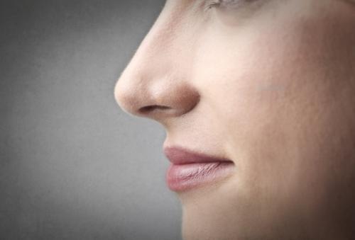 Длинный нос, как визуально сделать меньше. Как сделать нос уже и меньше в домашних условиях