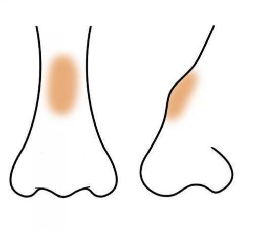 Как сделать нос визуально меньше с помощью косметики. Макияж, который «уменьшает» нос: пошаговая фотоинструкция