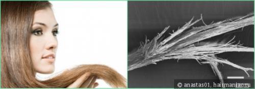 От чего волосы секутся по всей длине. Сечение волос по всей длине. Как я справляюсь