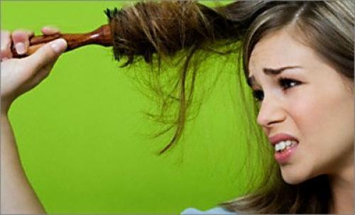 Если волосы секутся по всей длине, что делать. Причины повреждений