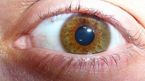 Ореховые глаза цвет волос. Влияние на характер