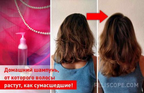 От какого шампуня растут волосы быстро. Домашний шампунь, от которого волосы растут, как сумасшедшие!
