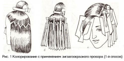 Схемы колорирования волос. Способы колорирования волос: современные техники