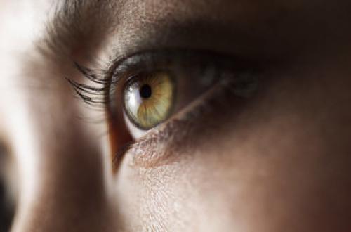 Глаза, как красить зеленые. Как красить зеленые глаза — полезные рекомендации