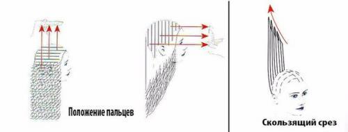 Прогрессивная форма стрижки. Прогрессивные формы стрижек: