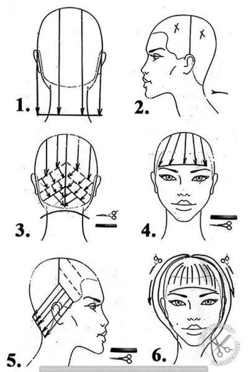 Равномерная форма стрижки. Прогрессивная форма стрижки.